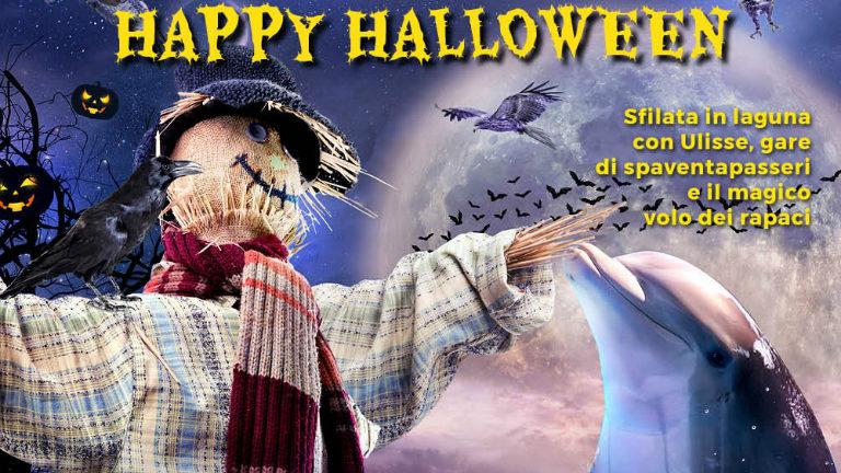 halloween riccione