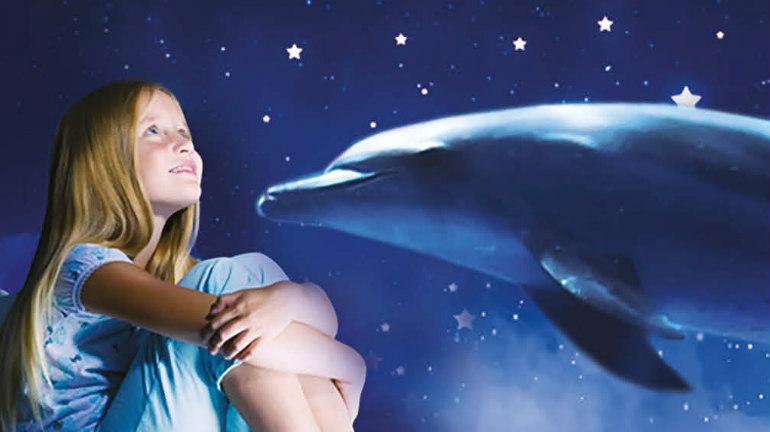 notti coi delfini